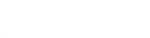 Z-Solutions_logo_white